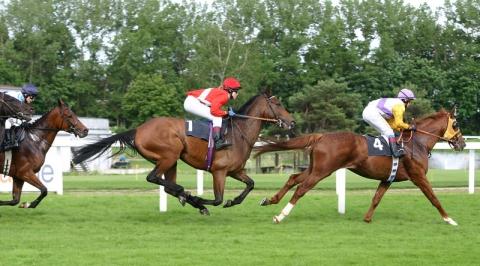 800px-horse-racing-3.jpg