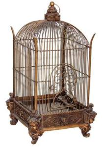 A birds cage
